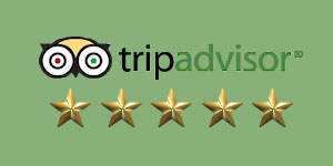 5-star-rated-trip-advisor