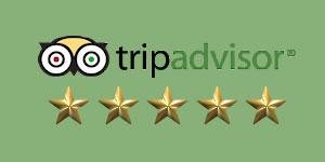 5-star-rated-trip-advisor